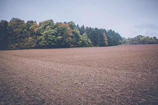 Skup gruntów rolnych